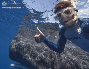 Whale Selife!